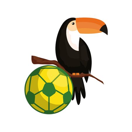 sport ball soccer with toucan isolated icon vector illustration design