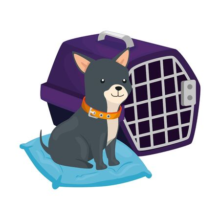 cute dog in cushion and carry box vector illustration design