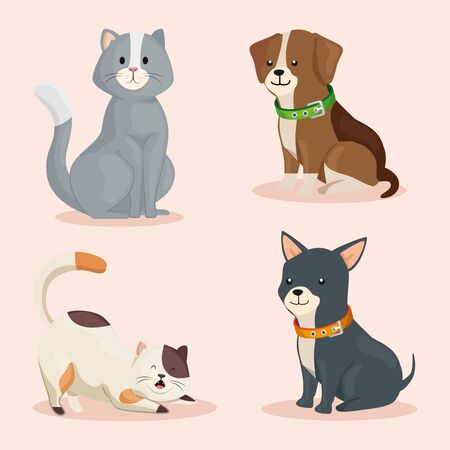 group of cute dogs with cats vector illustration design 向量圖像