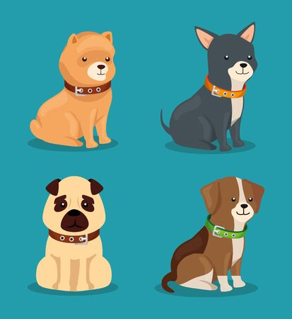 group of cute dogs animals vector illustration design