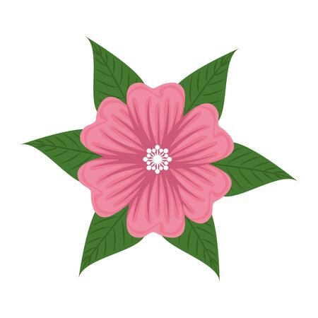 beautiful flower with leaves decoration vector illustration design 일러스트