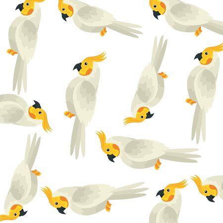 background of parrots birds exotic vector illustration design