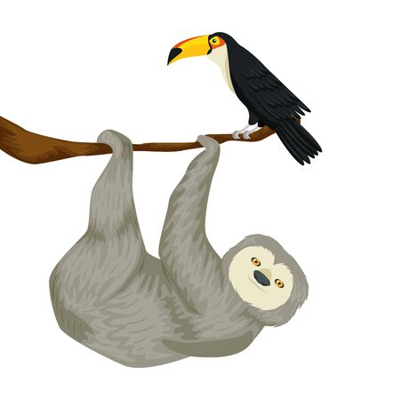 sloth hanging of branch with toucan vector illustration design
