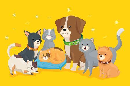 Groupe de petits chiens et chats vector illustration design