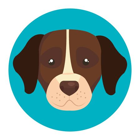 face of brown dog with white spot in frame circular vector illustration design