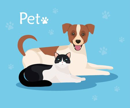 cute dog with cat in background blue with pawprints vector illustration design