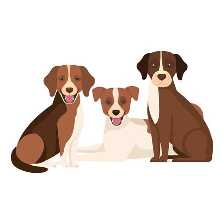 group of dogs brown and white vector illustration design