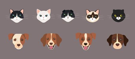 set of cute faces of cats and dogs vector illustration design