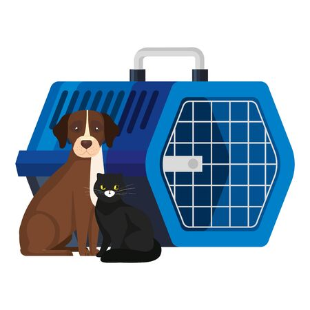 cute dog with cat and pet carry box vector illustration design