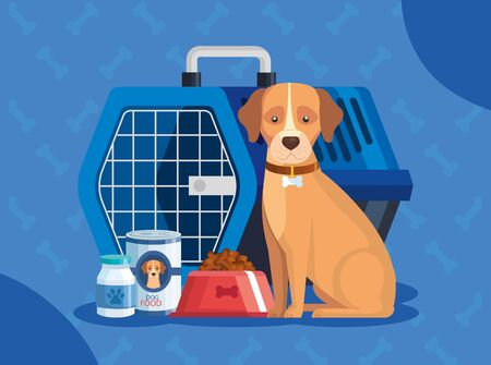 dog with carry box transport and icons vector illustration design