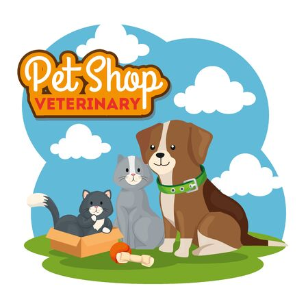 pet shop veterinary with cute cats and dog vector illustration design