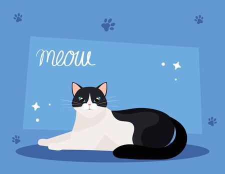 cute cat black and white in background blue with pawprints vector illustration design