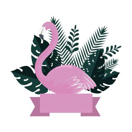 summer frame with flemish and exotic leaves plants vector illustration design