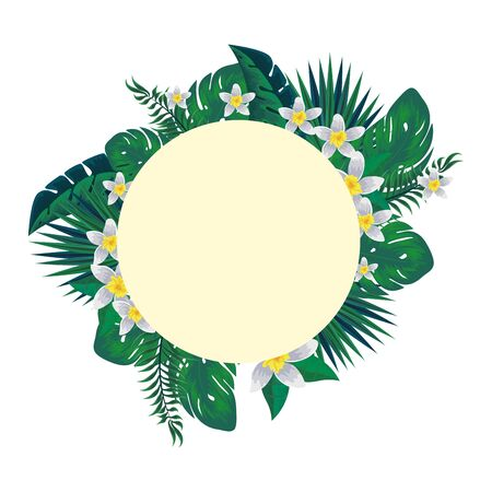circular frame with tropical flowers and leafs decoration vector illustration Illustration