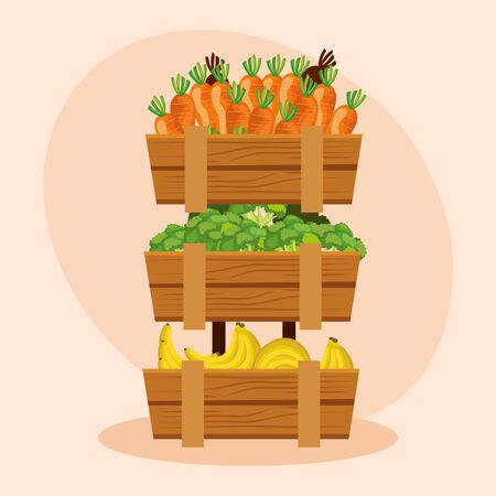 healthy carrots with carrots and bananas vegetables to natural store, vector illustration