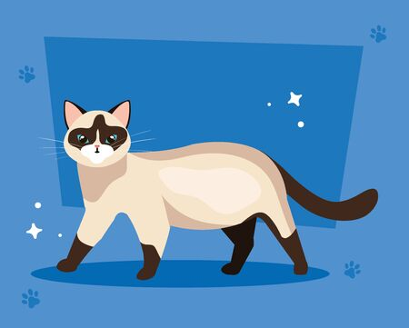 cute cat in background blue with pawprints vector illustration design Illustration