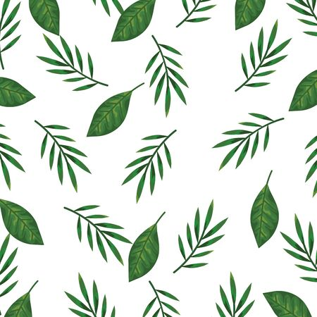 ecology leafs plants and branches nature pattern vector illustration design