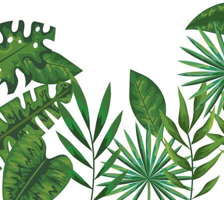 ecology leaves plants and branches nature pattern vector illustration design Ilustração