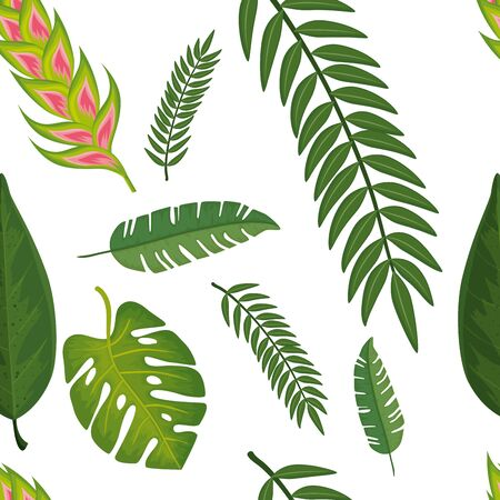 background of flower heliconia with leafs tropicals vector illustration design