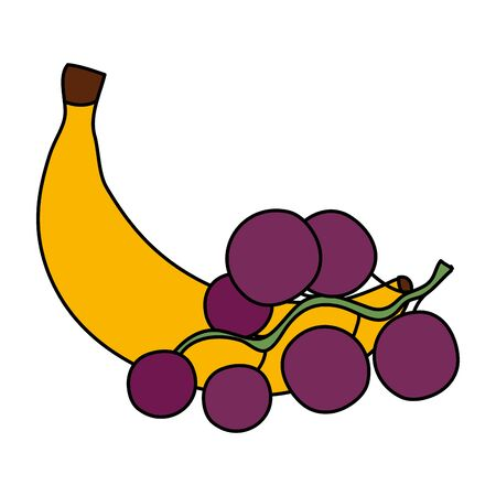 fresh banana with grapes fruits isolated icon vector illustration design Illustration