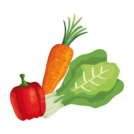fresh carrot with pepper and chard vegetables vector illustration design