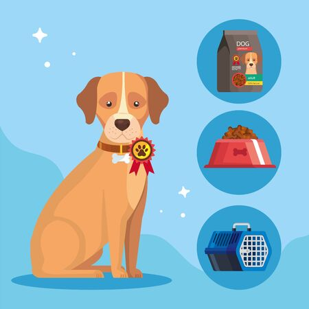 cute dog animal with icons vector illustration design 矢量图像