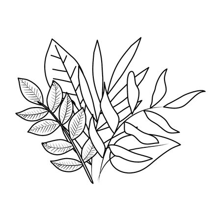 ecology leafs plants and branches nature decoration vector illustration design