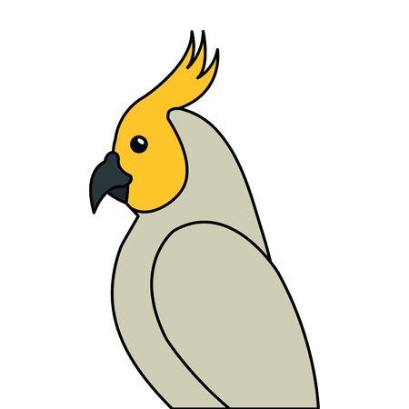 parrot bird exotic isolated icon vector illustration design Illustration