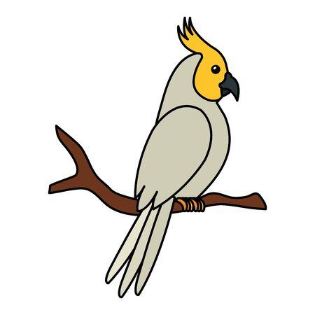 parrot bird in tree branch isolated icon vector illustration design Illustration