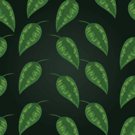 tropical leaves exotic plant design over dark green background vector illustration Illustration