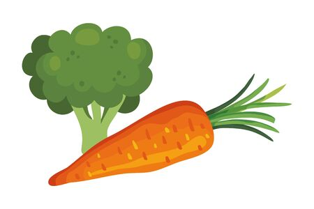 fresh carrot with broccoli vegetables vector illustration design
