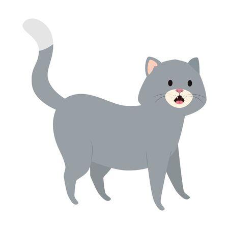 cute little cat animal icon vector illustration design 矢量图像