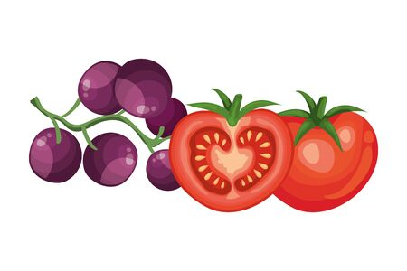 fresh tomatoes with grapes isolated icons vector illustration design