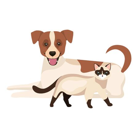 cute dog with cat isolated icons vector illustration design 向量圖像