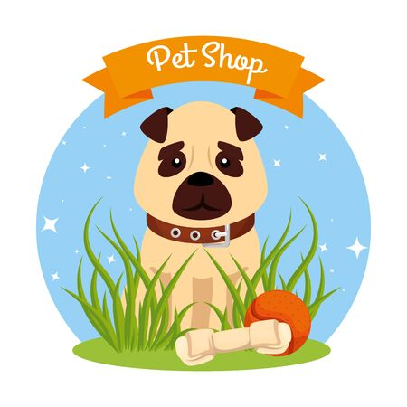 pet shop veterinary with cute dog and icons vector illustration design Ilustracja
