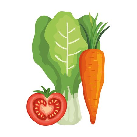 fresh tomato with chard and carrot vector illustration design