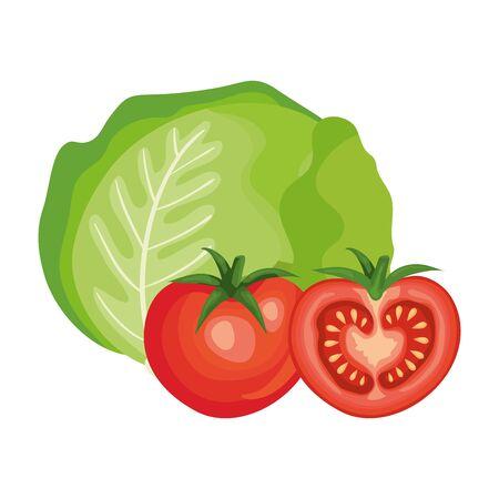 fresh tomatoes with lettuce vegetables vector illustration design Illustration