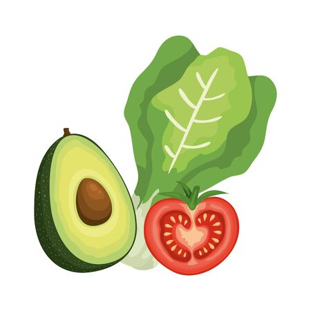 fresh tomato with chard and avocado vector illustration design Illustration
