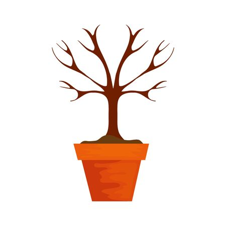 dry tree in pot plant isolated icon vector illustration design Illustration