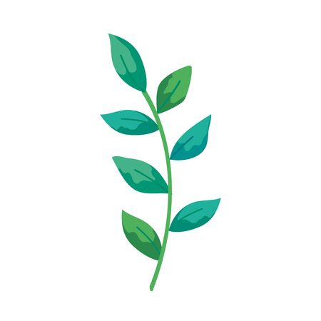 branch with leafs natural isolated icon vector illustration design