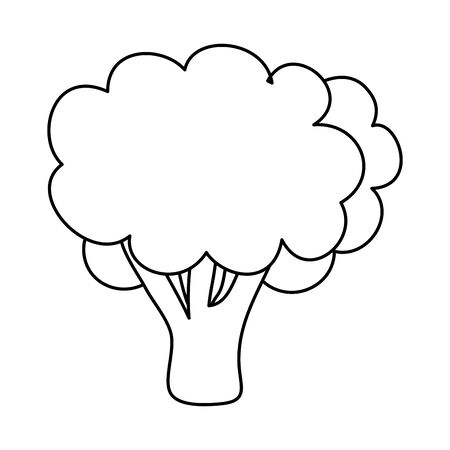 fresh broccoli vegetable isolated icon vector illustration design