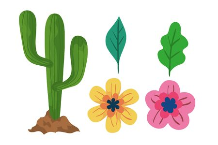 Cactus flowers and leaves design, Plant desert nature tropical summer mexico and western theme Vector illustration Vettoriali