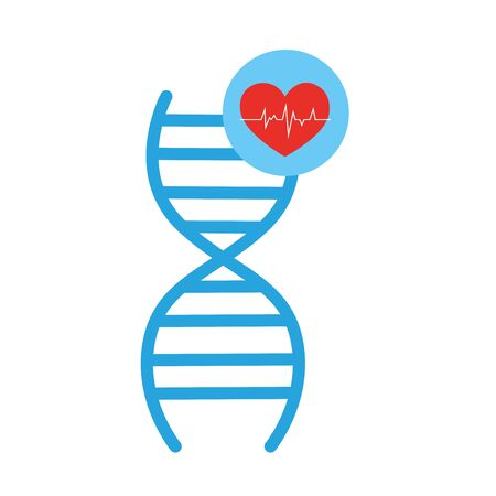 deoxyribonucleic acid structure and heart vector illustration design 向量圖像