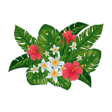exotic tropical flowers and leafs decoration vector illustration design Ilustrace