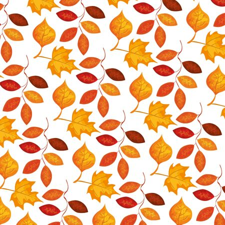 autumn branch and dry maple leafs pattern vector illustration design Ilustração
