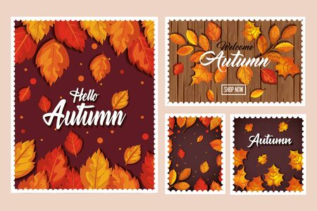 set patterns of autumn with leafs decoration illustration design
