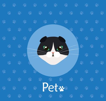 face of cat black and white in background with pawprints vector illustration design
