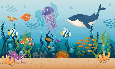 blue whale with fishes and wild marine animals in ocean, sea world dwellers, cute underwater creatures,habitat marine concept vector illustration design Vectores