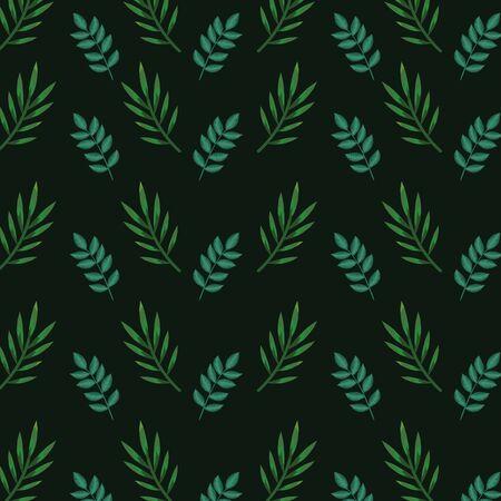 nature branches leaves exotic plants over dark green background vector illustration Illustration