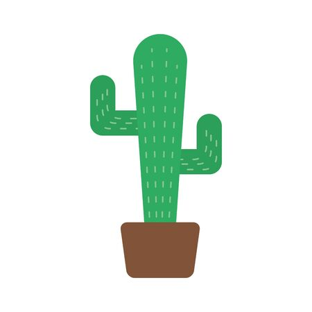 cactus mexican plant isolated icon vector illustration design 向量圖像